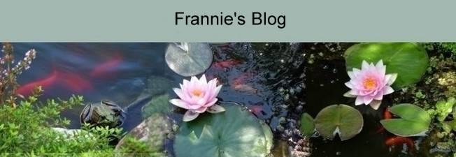 Frannie's Blog