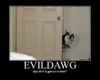 Evildawg Demotivational Poster