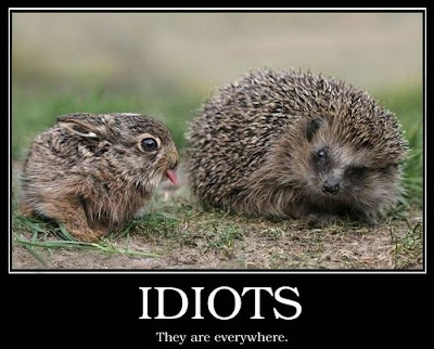 Idiots Demotivational Poster