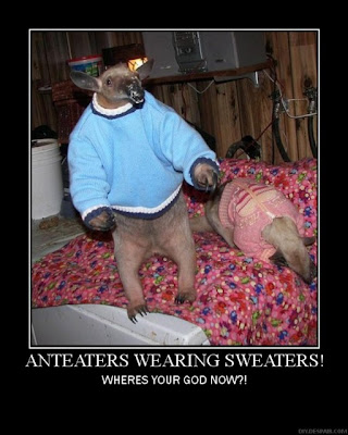 Anteaters Wearing Sweaters! Demotivational Poster