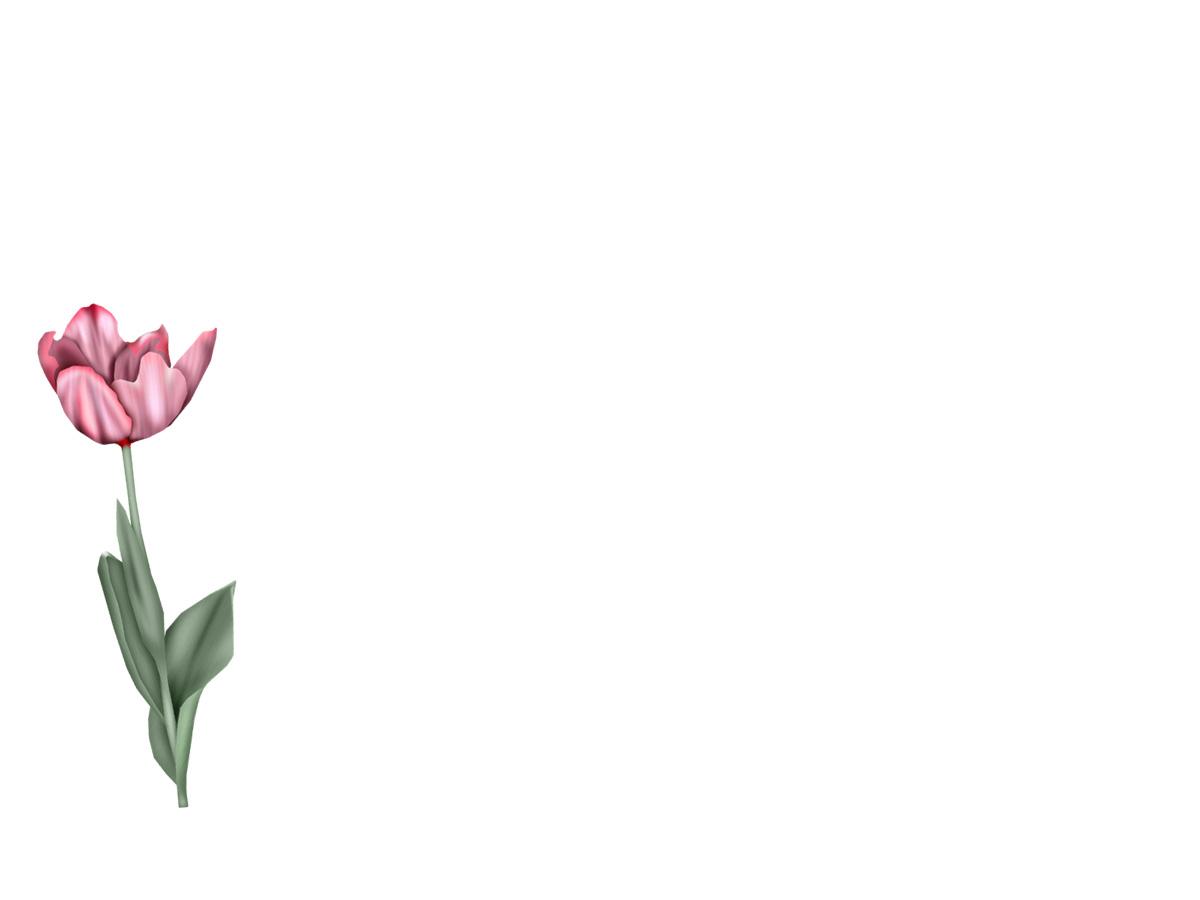 imagenes de flores para fondos de pantalla MyMadrid - Imagenes De Fondos De Flores