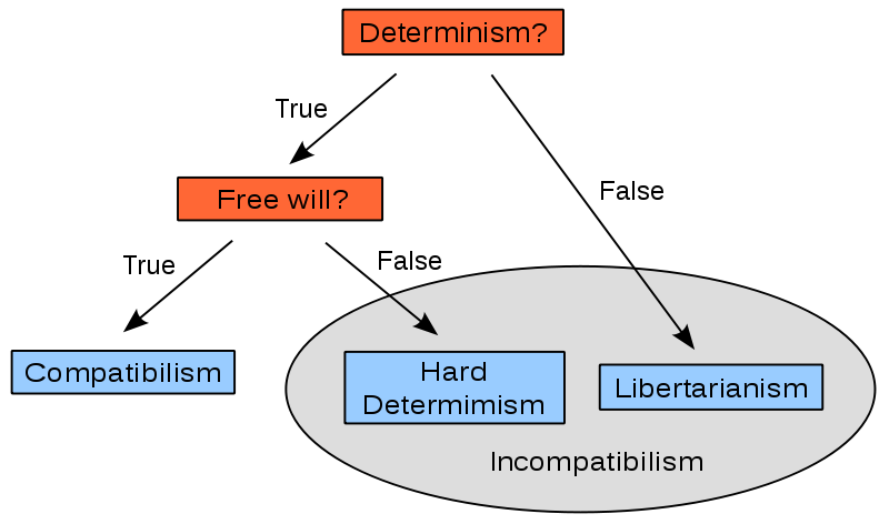 defense of hard determinism A defense of libertarian free will free will in this essay, i will argue that libertarian free will presents a more promising theory of human action than hard determinism.