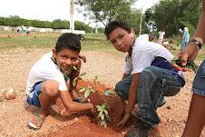 Plantando para o futuro (Parque Zé Bolo Flô)