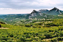 Vineyards in the Dentelles de Montmirail