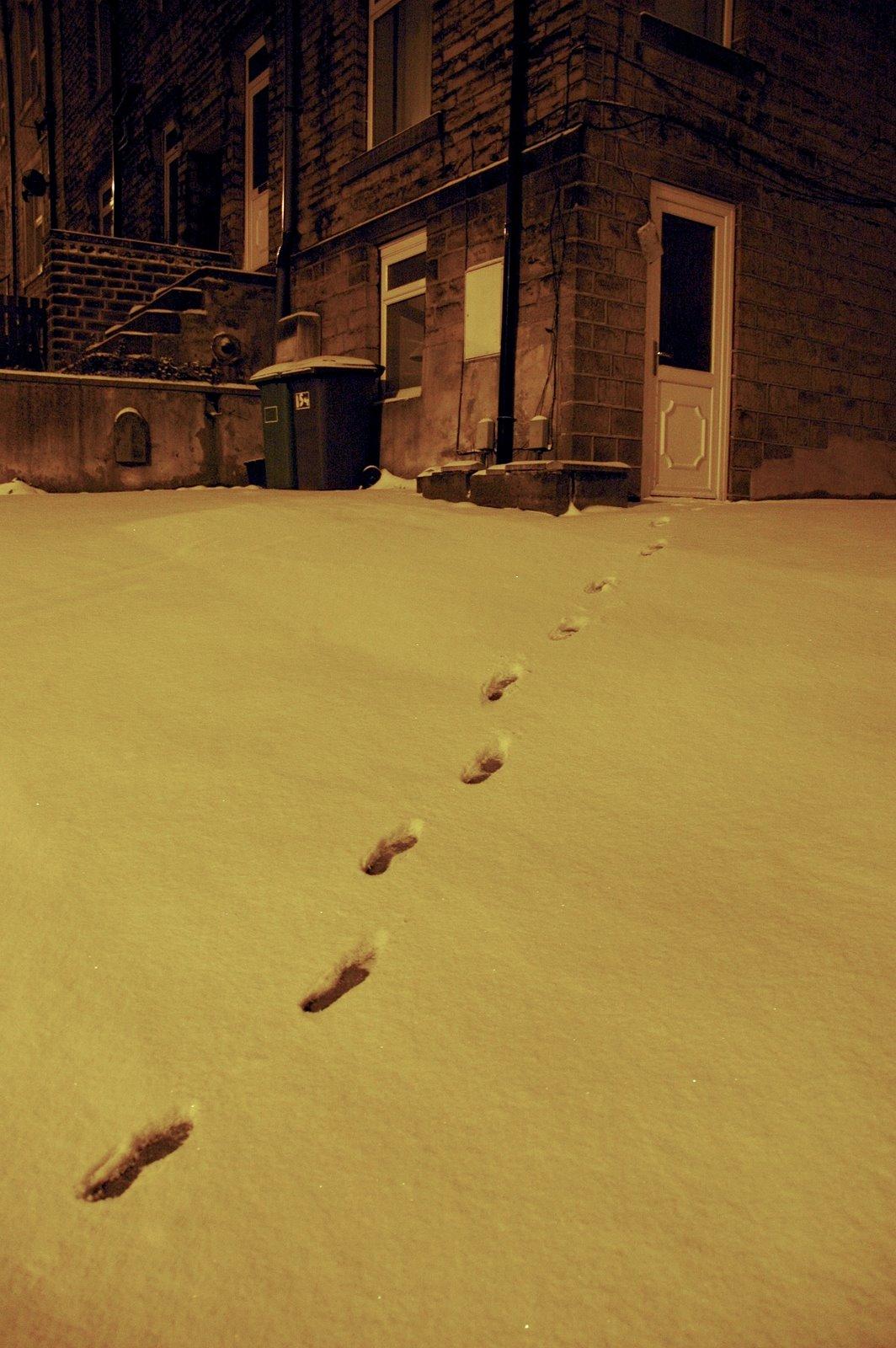 [footsteps.jpg]