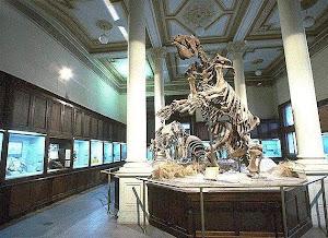 Museo de Ciencia Naturales