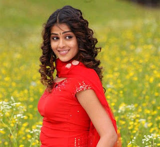02genelia hot actress pictures130409