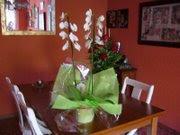 Mi amiga Eni, me regala estas flores.