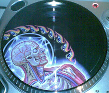 Lateralus Vinyl Picture Disc