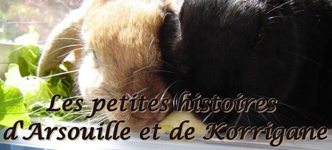 Les petites histoires d'Arsouille et Korrigane