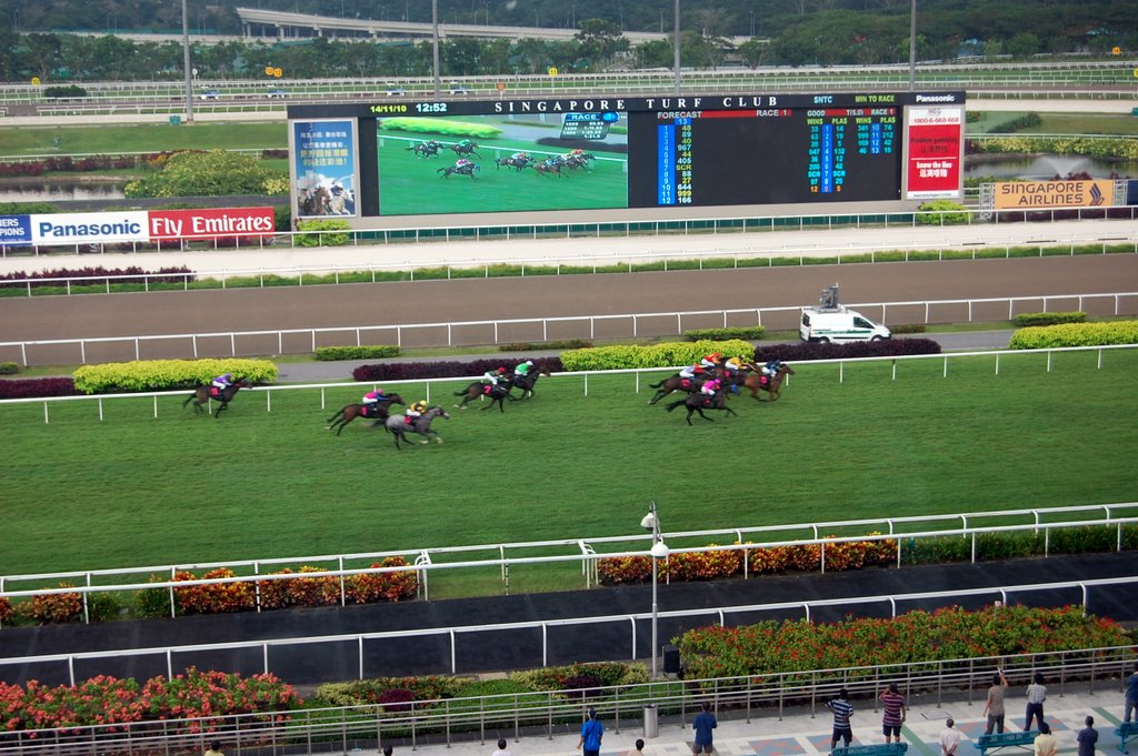 English As a Second Nation: SINGAPORE TURF CLUB, Gold Cup