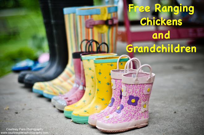 Free Ranging Chickens and Grandchildren