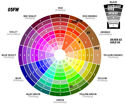 color fashion trends 2004 2009 bv color wheels analysis