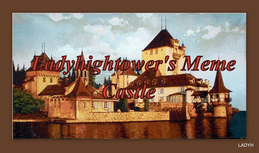 Ladyhightower's Meme Castle