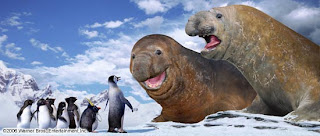 The Elephant Seals-Happy Feet