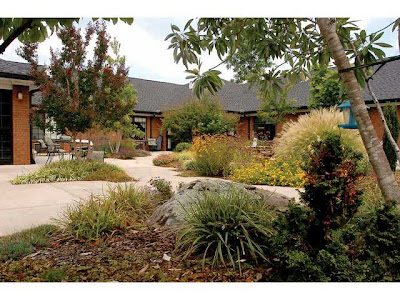Healing Garden « Therapeutic Landscapes Network