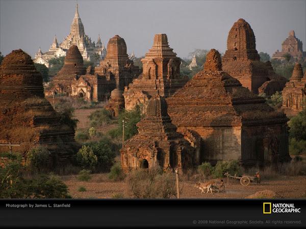 Pagodas Stanfield