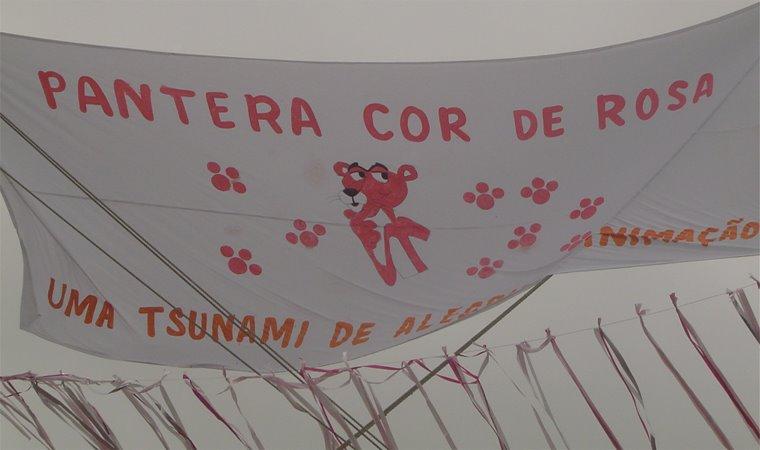 Bloco Pantera 100% cor de rosa de Paraty