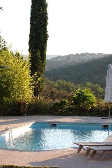 Mas des esses piscine et jardin for Perche nettoyage piscine