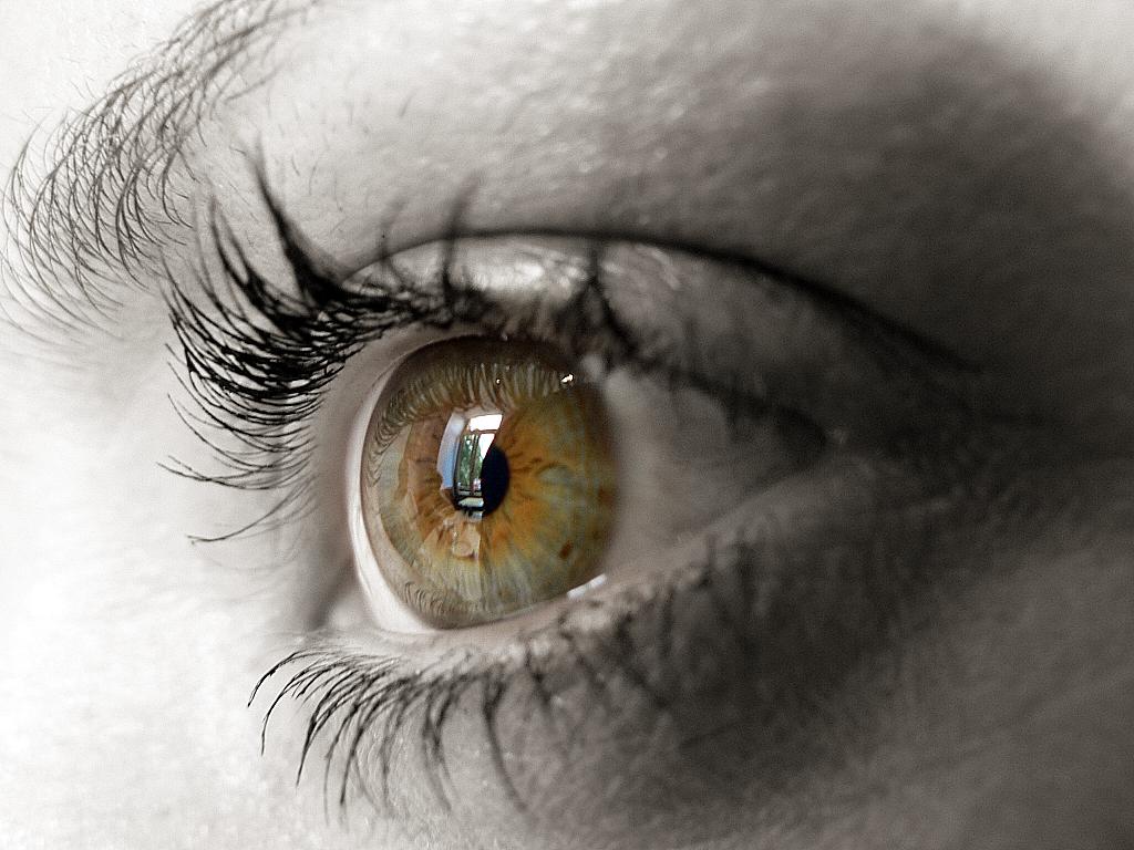 http://3.bp.blogspot.com/_3T1V47qEFpA/R0_D70KSokI/AAAAAAAAAXw/dwJnwAhMgeI/s1600-R/ojo+motja.JPG