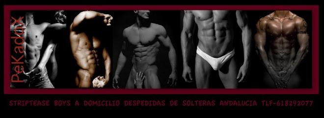 BOYS GRANADA-BOYS CORDOBA-BOYS MALAGA-BOYS ALMERIA-BOYS SEVILLA-BOYS JAEN-BOYS CADIZ-BOYS HUELVA