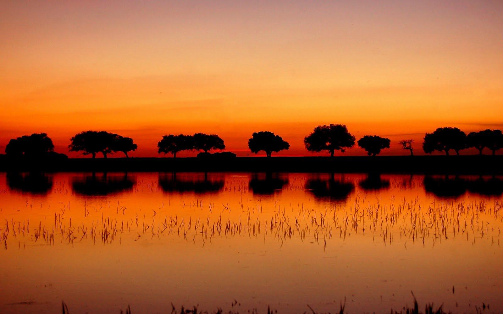 http://3.bp.blogspot.com/_3UZ_N8Qdang/THmGcnyNAbI/AAAAAAAAC4I/gboOqYZslSg/s1600/Best_Nature_www.laba.ws_+004.jpg