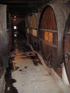 Por las rutas del vino. Viaje a Mendoza octubre 2009