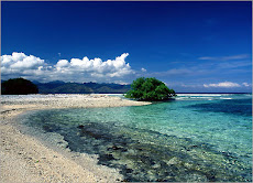 The Beauty of Indonesian Ocean
