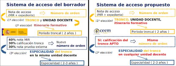 propuesta del CEEM para la troncalidad MIR