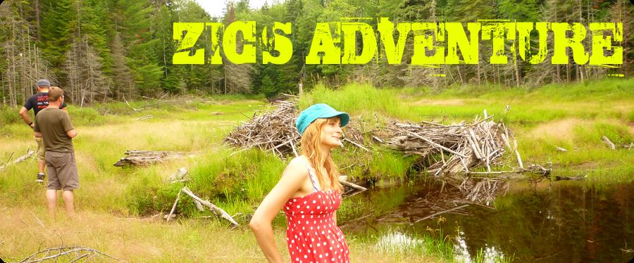 Zic's adventure