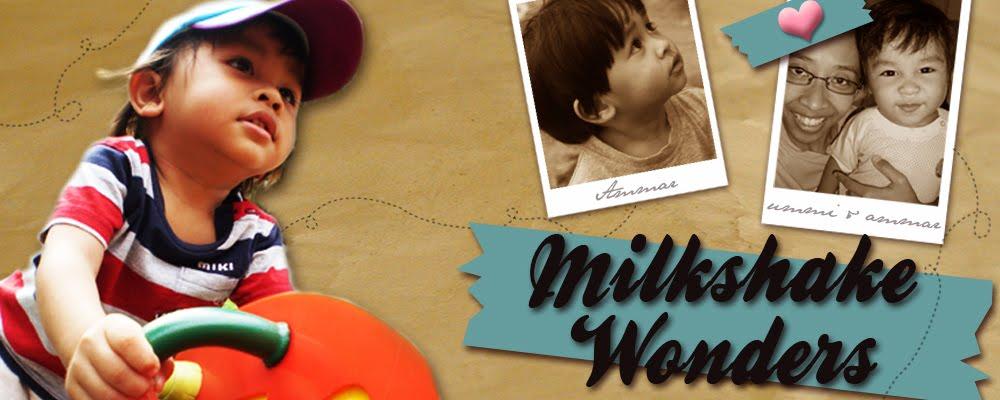 Milkshake Wonders