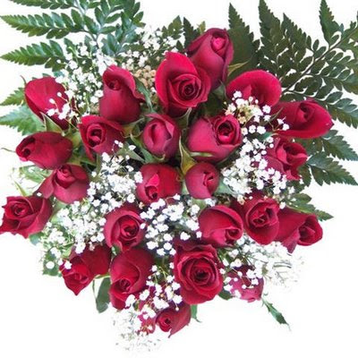 gift roses on valentine's day