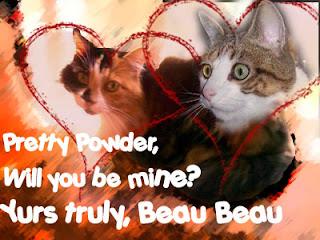 catty valentine wishes
