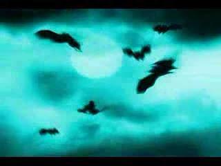 halloween evil night of bats