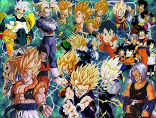 DRAGON BALL Z  VIDEOS SERIE DE TV