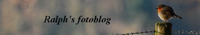 Ralph's fotoblog