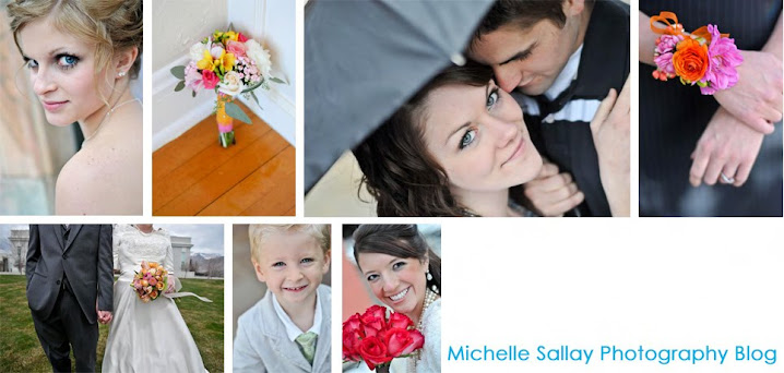 Michelle Sallay Photography