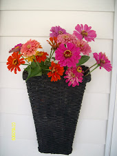 Zinnias By the Front Door