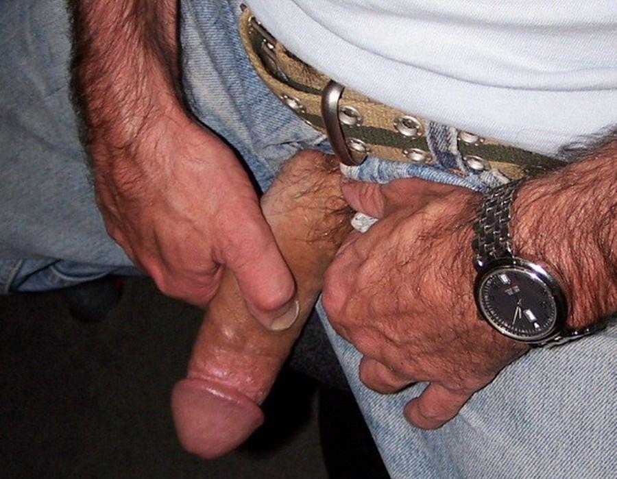 foto oso maduro gay: