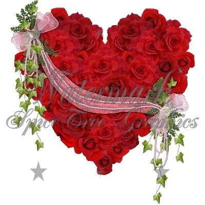 أجمل الورود الحمراء 99