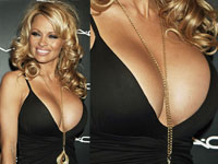pamela anderson breast