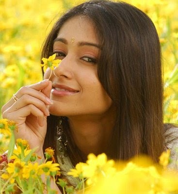 Ileana Actress Wallpapers (3)