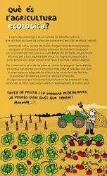 Plafó 2: Què és l'agricultura ecològica?