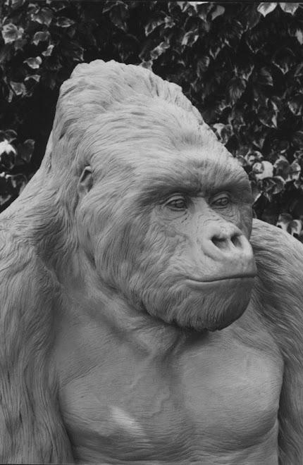 mountain gorilla (in clay form)