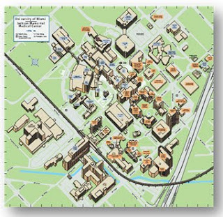 Entreprise-wide RTLS: The Marauder's Map For Hospitals