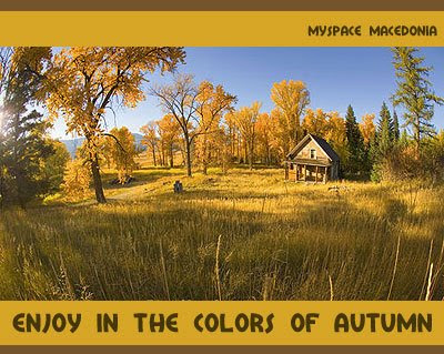 Enjoy In The Colors Of Autumn - House In Autumnal Countryside (brown, yellow, trees, meadow, grass, sky, blue)