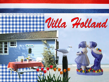 Naar de website van Villa Holland