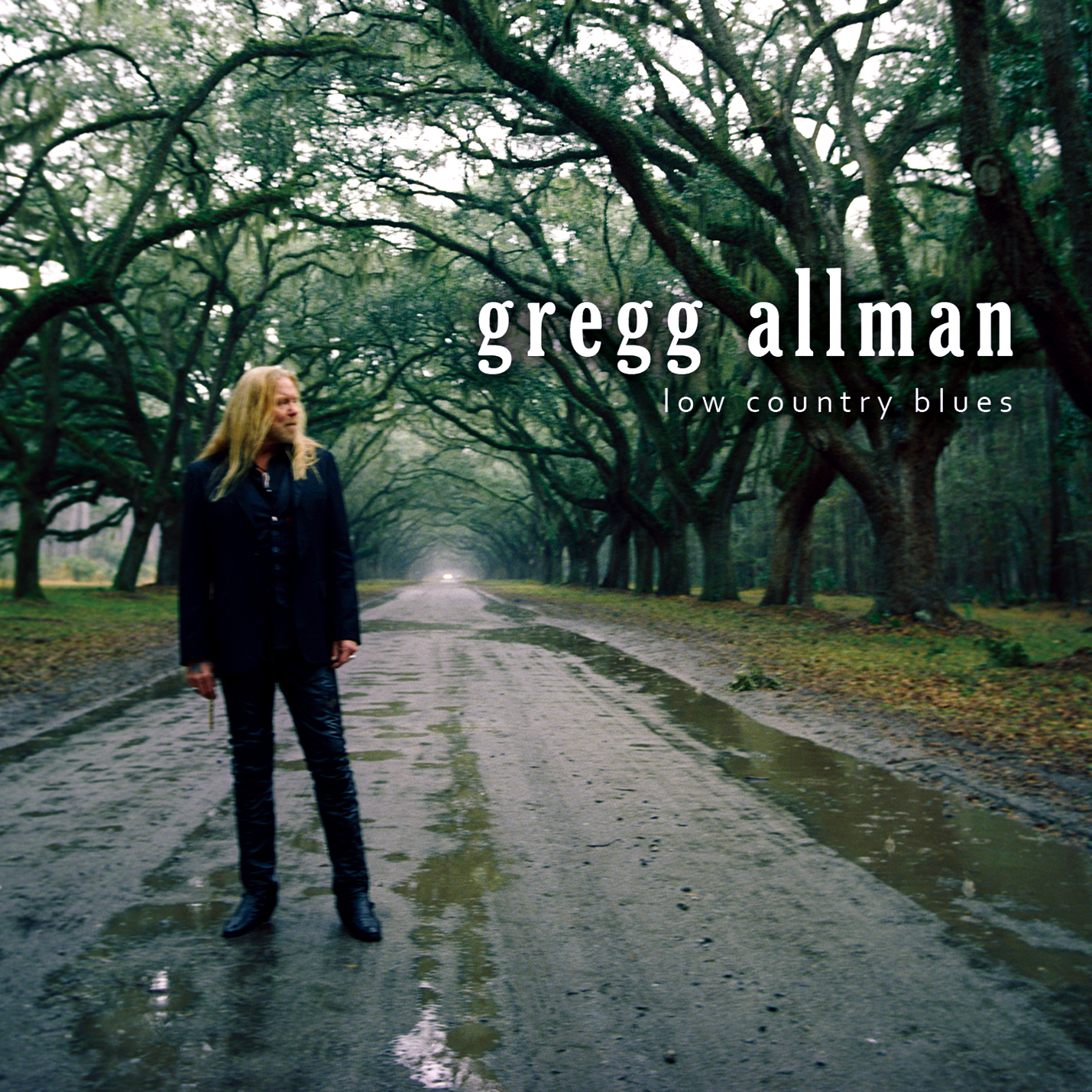 Gregg allman low country blues download