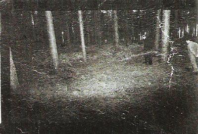 藍道申事件 - 英國的「藍道申森林事件」
