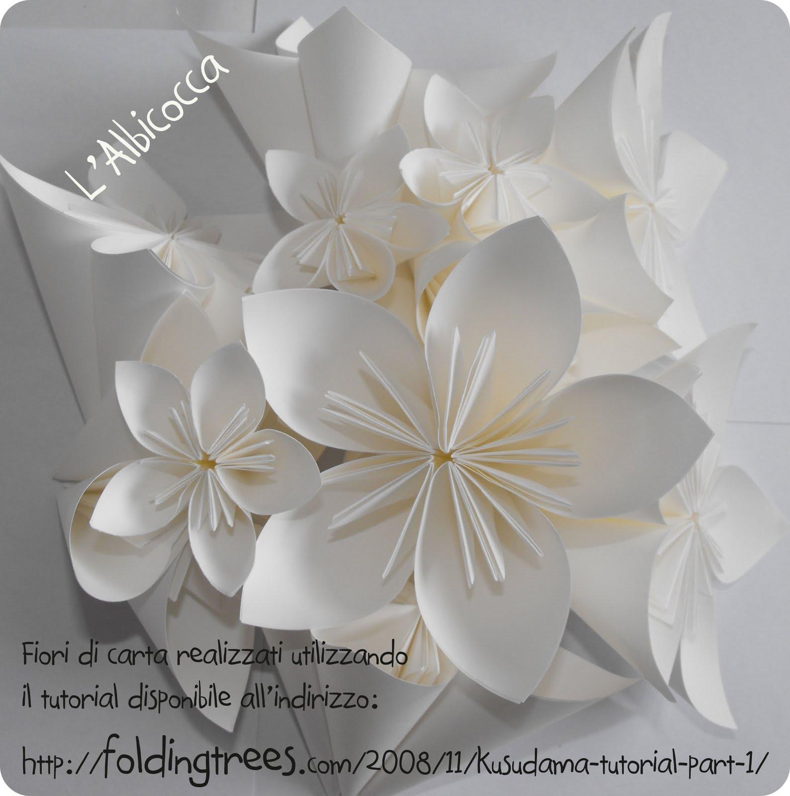 L 39 albicocca fiori di carta per soldi di carta for Carta da parati fiori grandi